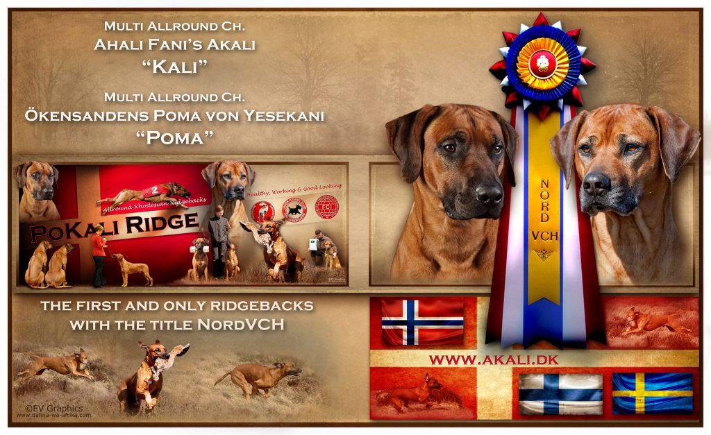 pokali-ridge-advertisement foto